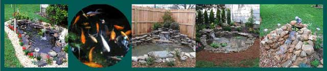 Water Features - Rain Gardens - Ponds - Waterfalls
