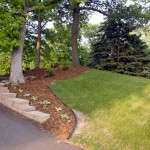 Now an easy to manage area with hostas, mulch and plantings