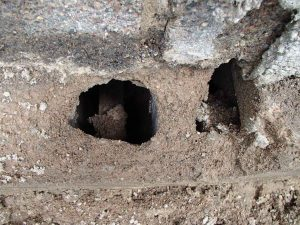 Big holes close up